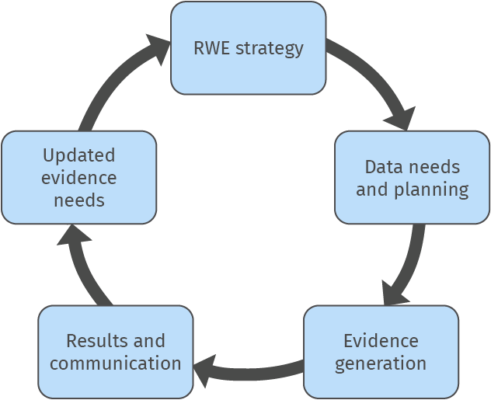 Execution of RWE process and project management
